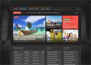 intranet design for a global chemical company