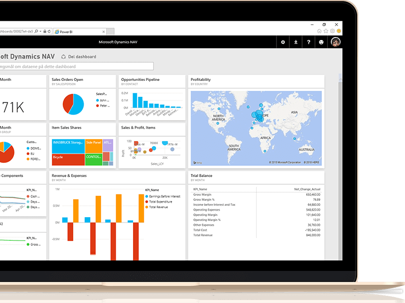 Microsoft Power BI Training and Consulting Services